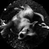 Foto Wachhund Fluffy